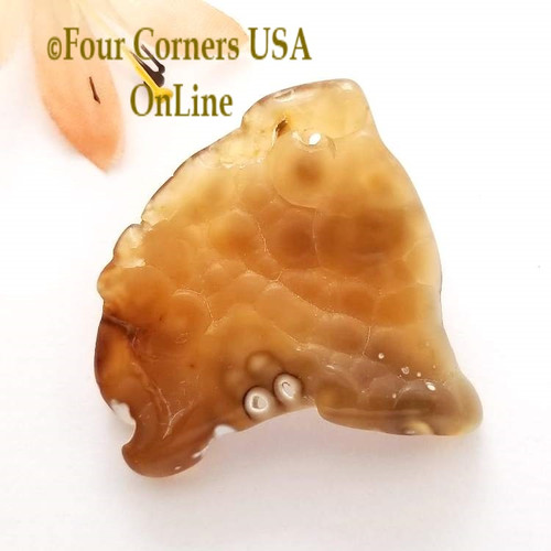 Florida Agatized Fossil Coral No 4 Jewelry Component Special Buy Final Sale BDZ-1930 Four Corners USA OnLine Jewelry Making Beading Craft Supplies