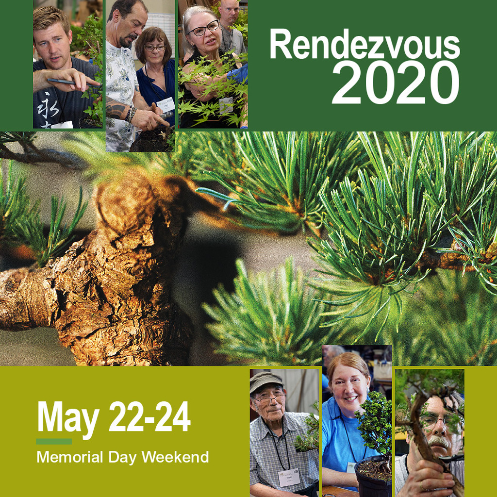 Rendezvous Registration
