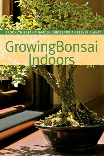 Growing Bonsai Indoors - BKGBI
