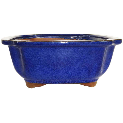 Large Blue Lotus Pot - CGI4-10BL