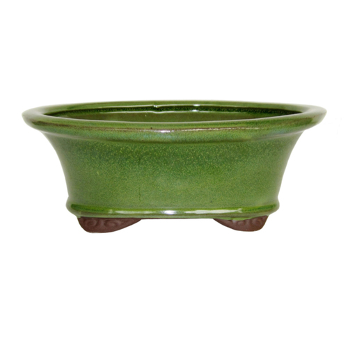 Medium Serpent Green Oval Pot - CGO9-8STG