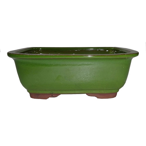 Medium Serpent Green Rectangle Pot - CGG91-8STG