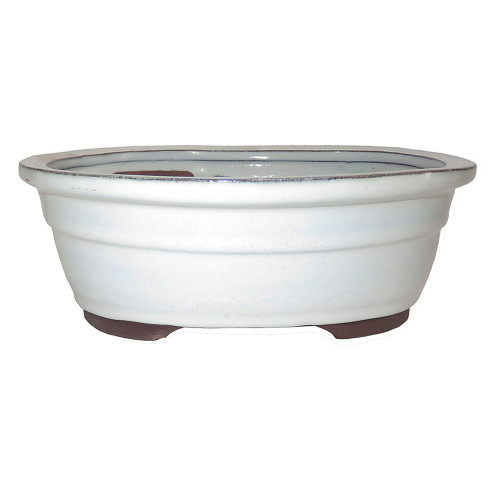 Large New Cream Oval Pot - CGO38-10NCM