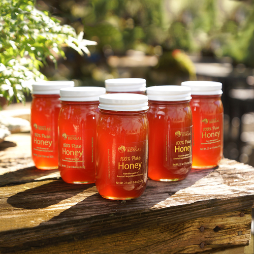 Pure Honey - 6 Pint Jars - SPHONEY6