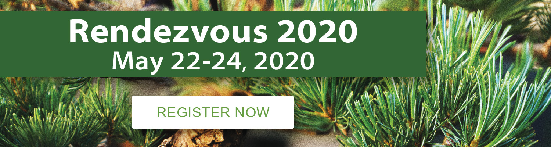 brussels-bonsai-rendezvous-2020.jpg