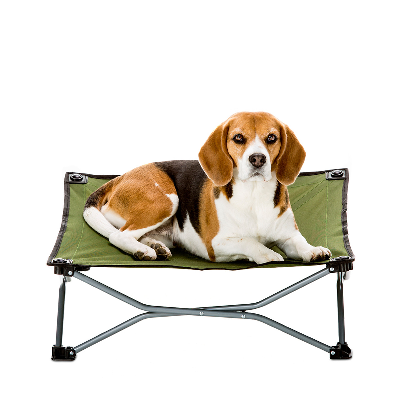 Picture of: Small Elevated Dog Bed Green Carlson Pet