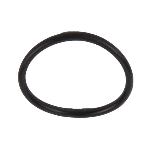 O-ring, DSI 310-021