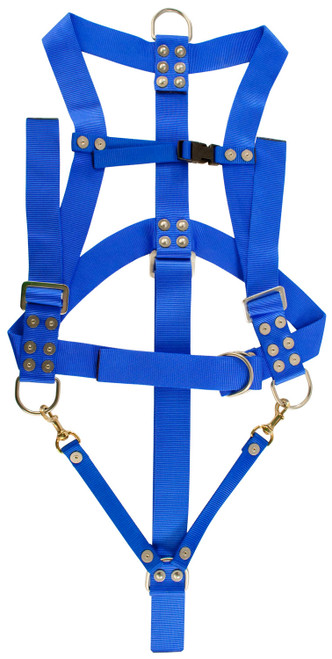 Diver's Safety Harness