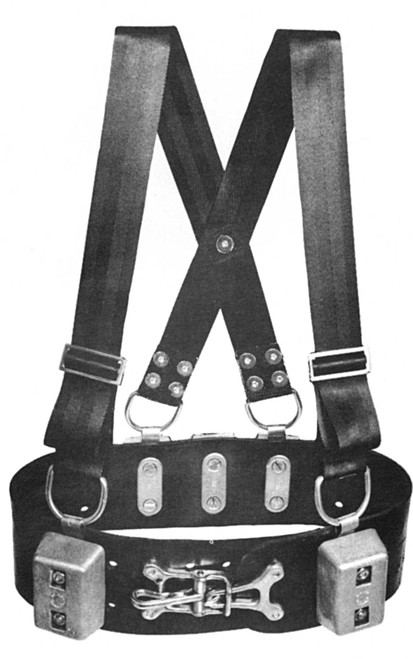 Commercial Weight Belt