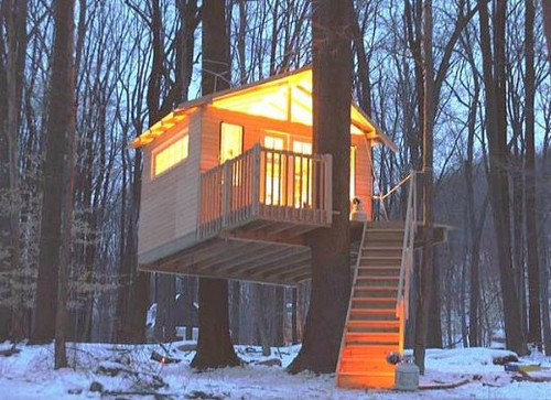 Double Tree Cabled up Treehouse Plans