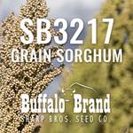 SB3217 Grain Sorghum (Milo)