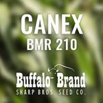 Canex BMR 210