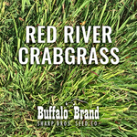 Crabgrass, Red River/Dah's Big River