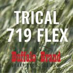 Trical 719 Flex Awnletted Medium Maturity