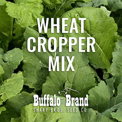 Wheat Cropper Mix - Grazing/Haying/Cover