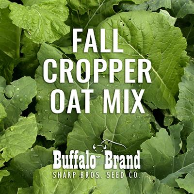 Fall Cropper Oat Mix - Cover/Grazing