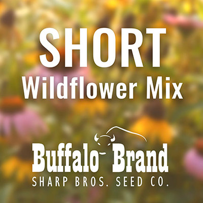 Short Wildflower Mix