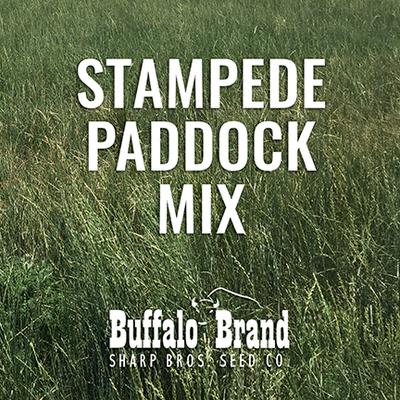 Stampede Paddock Mix