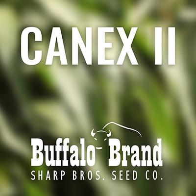 Canex II