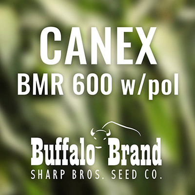 Canex BMR 600 with pollinator