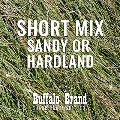 Short Grass Mix - Sandy or Hardland Soils