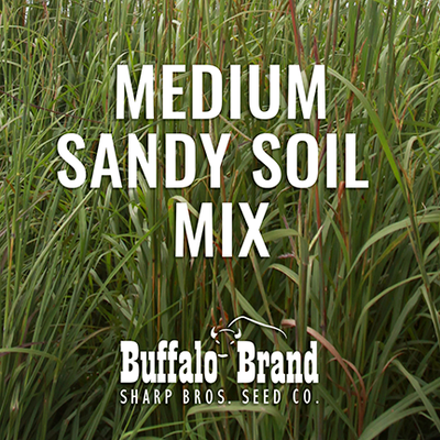 Medium Grass Mix - Sandy Soil