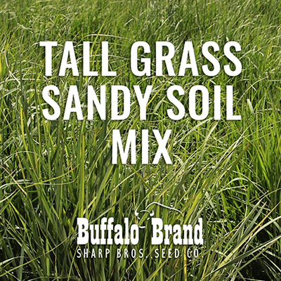 Tall Grass Mix - Sandy Soil