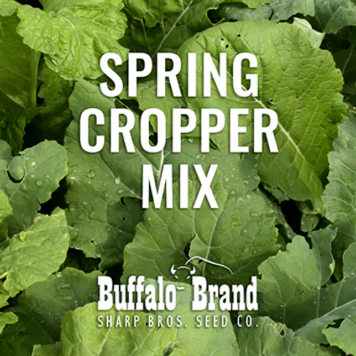 Spring Cropper Mix - Grazing/Haying
