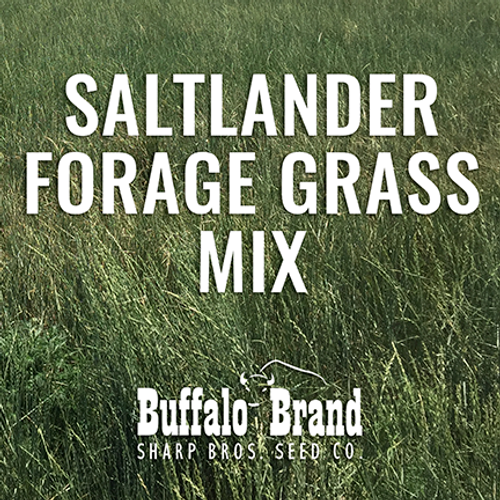 Saltlander Forage Grass Mix