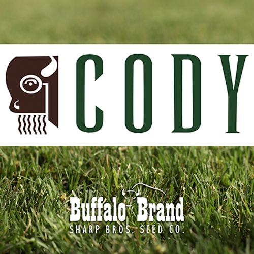 Cody Buffalograss