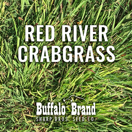 Crabgrass, Red River