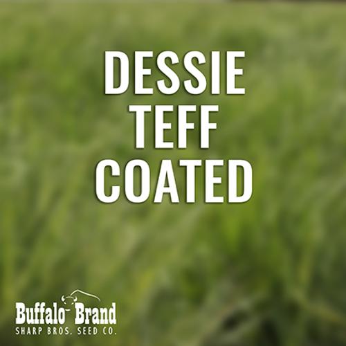 Teff, Dessie  COATED