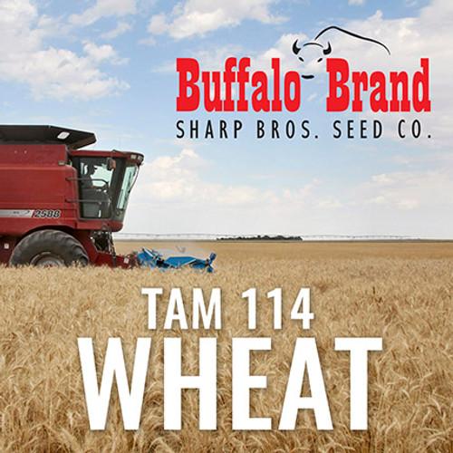 Wheat - Tam 114