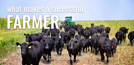 What makes a successful farmer?