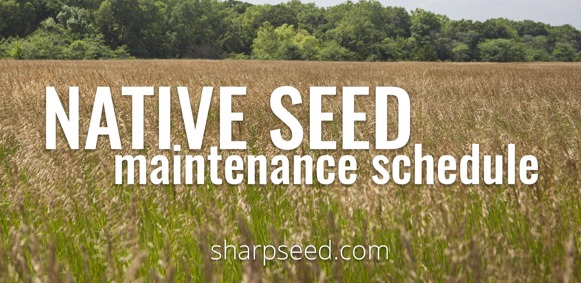 Large-scale Native Seeded Areas and Maintenance Schedule
