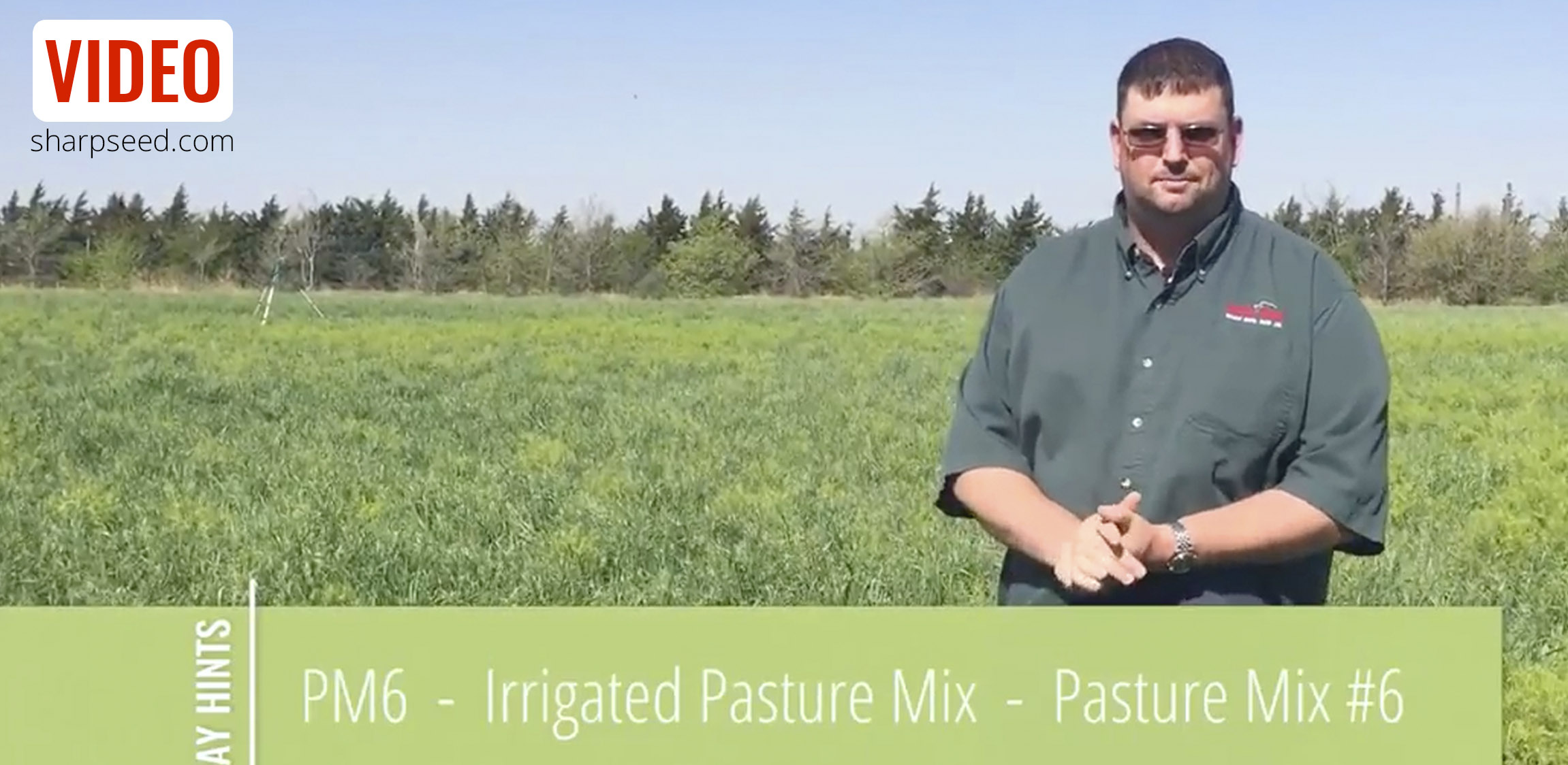 PM6 | Sharp Bros. Seed Co.'s Irrigated Pasture Mix
