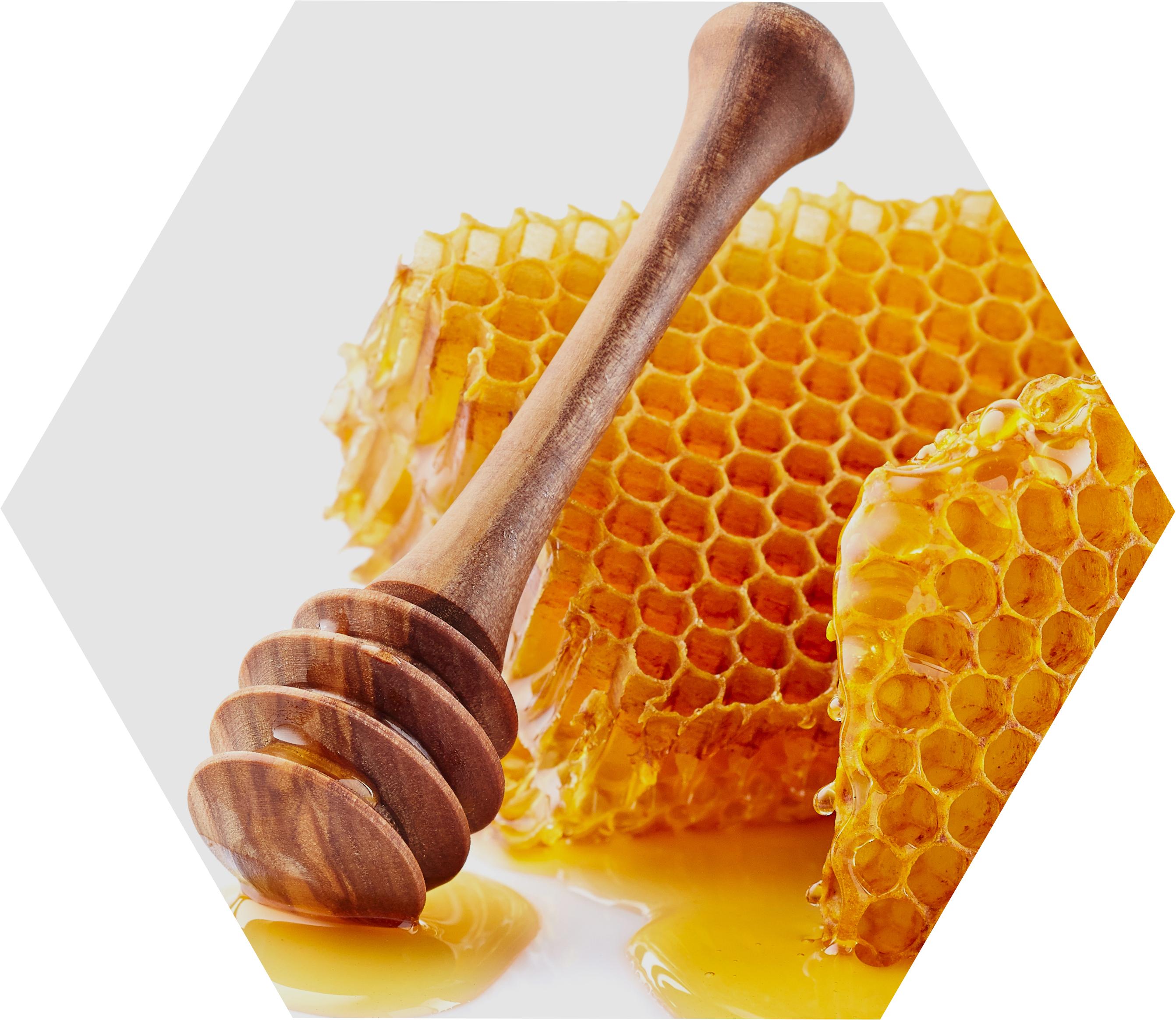 beeswax-honey-honeycomb.jpg