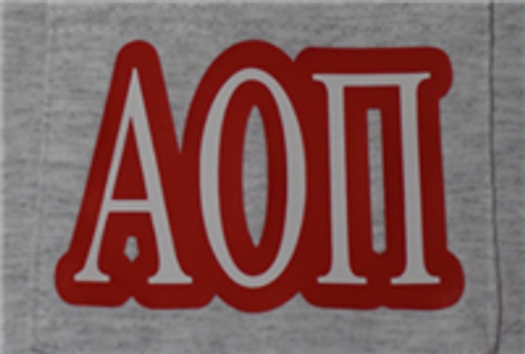 Alpha Omicron Pi Pocket T Shirt