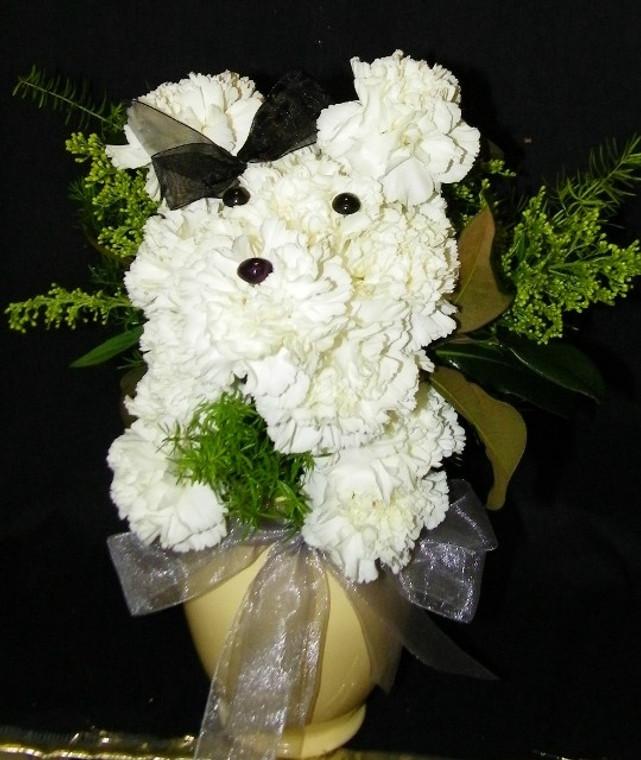 Puppy Love Flowers
