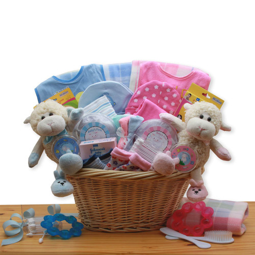 Double Delight Boy and Girl Twins New Baby Gift Basket - Blue / Pink