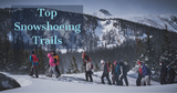 Top Snowshoeing Trails in Colorado