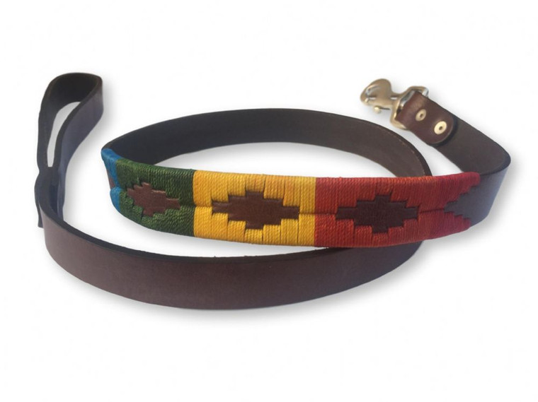Hand Woven Rainbow Polo Leather Dog Lead