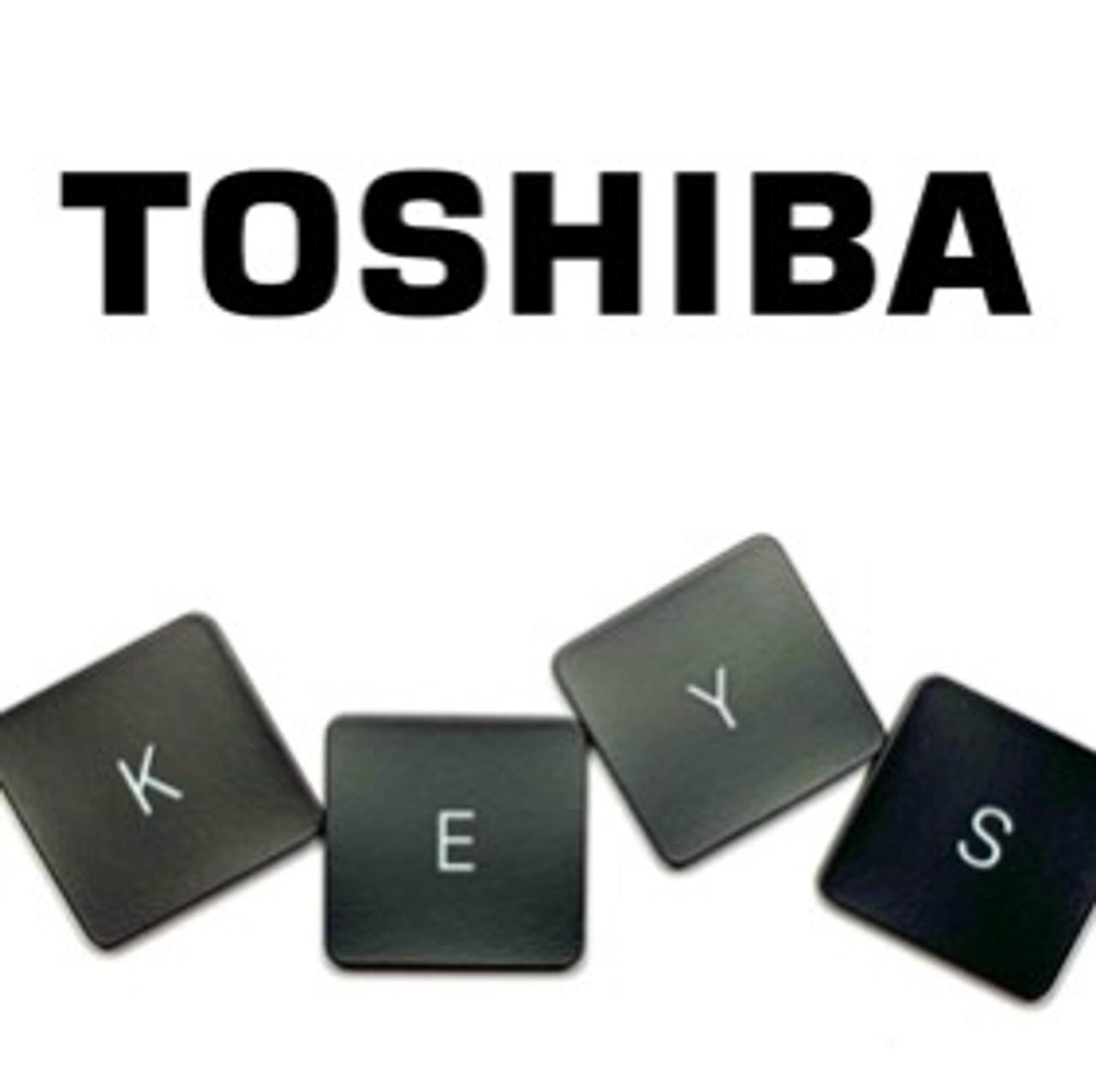 Toshiba Portege z30t-A Laptop Keyboard Key Replacement