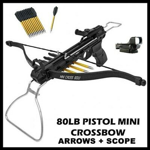 NEW 80 LB ARCHERY HUNTING Gun BLACK PISTOL CROSSBOW W/ ARROWS BOLTS w Scope