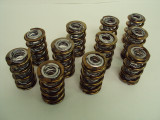 New 11pc Partial Box of LSM #700B Valve Springs