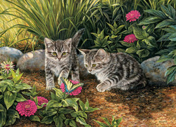 Double Trouble Kittens, 1000pc
