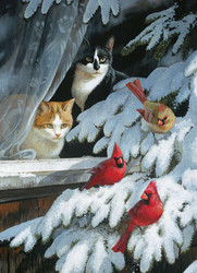 A peaceful winter scene from Cobble Hill featuring a pair of cats closely watching a trio of cardinals perched on the branches of a snow covered tree.