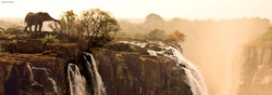 This Heye puzzle presents a panoramic photograph of a fascinating wildlife scene featuring a lone elephant feeding precariously close to the edge of a cliff with waterfall.