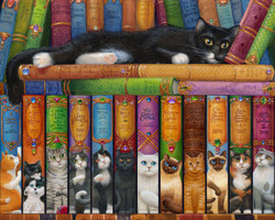Cat Bookshelf, 1000pc