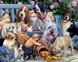 Dogs on a Bench, 1000pc